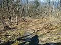 製錬所跡へ向う山道