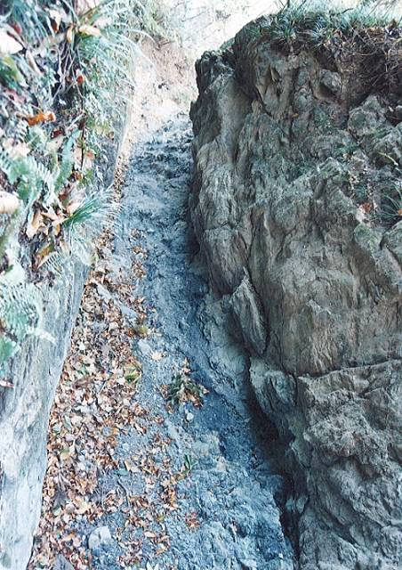 和銅採掘露天堀跡